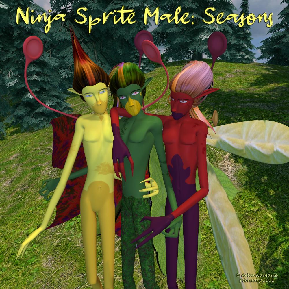Ninja Sprite Male: Seasons