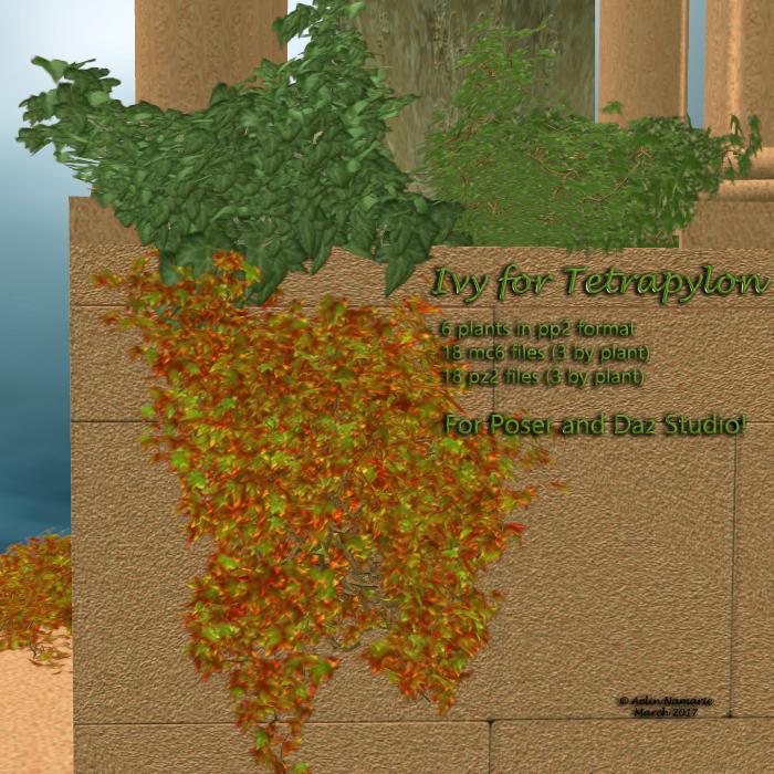 Ivy for Tetrapylon *Exclusive*