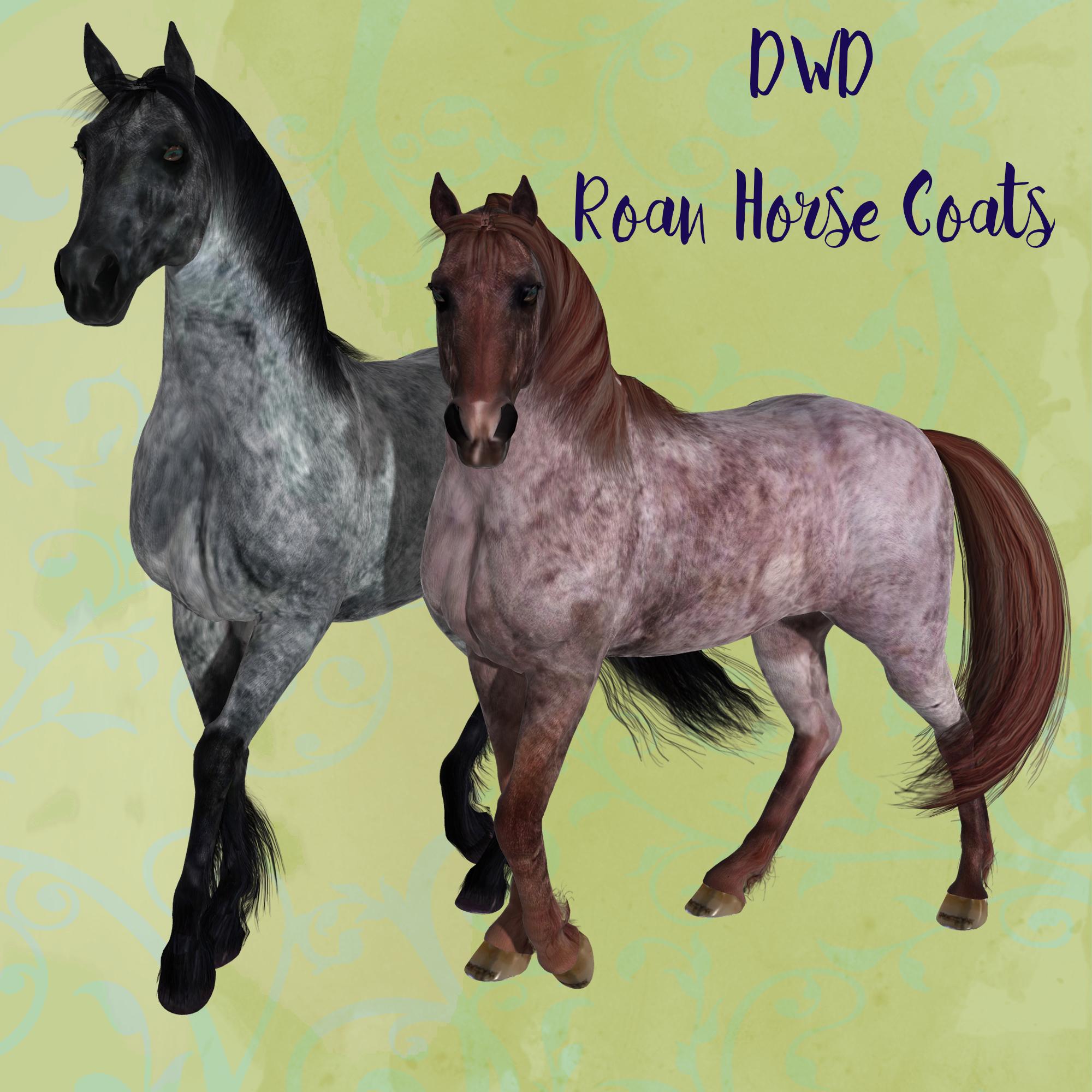 DWD Roan Horse Coats *Exclusive*