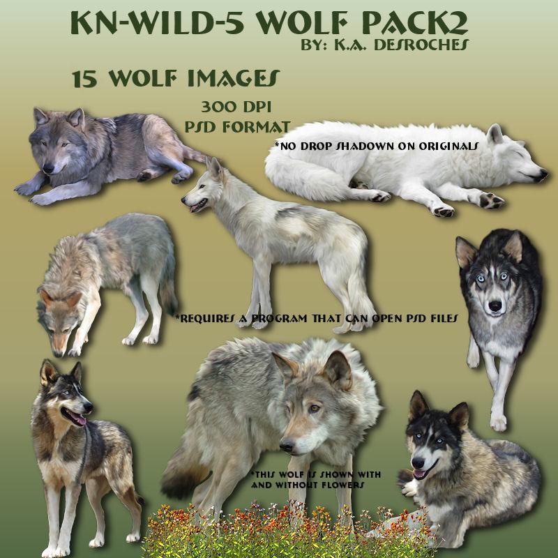 Wild 5-WolfPack2