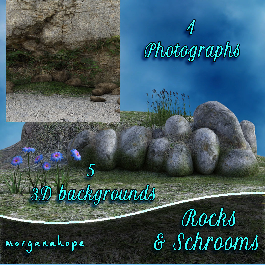 Rocks and Schrooms