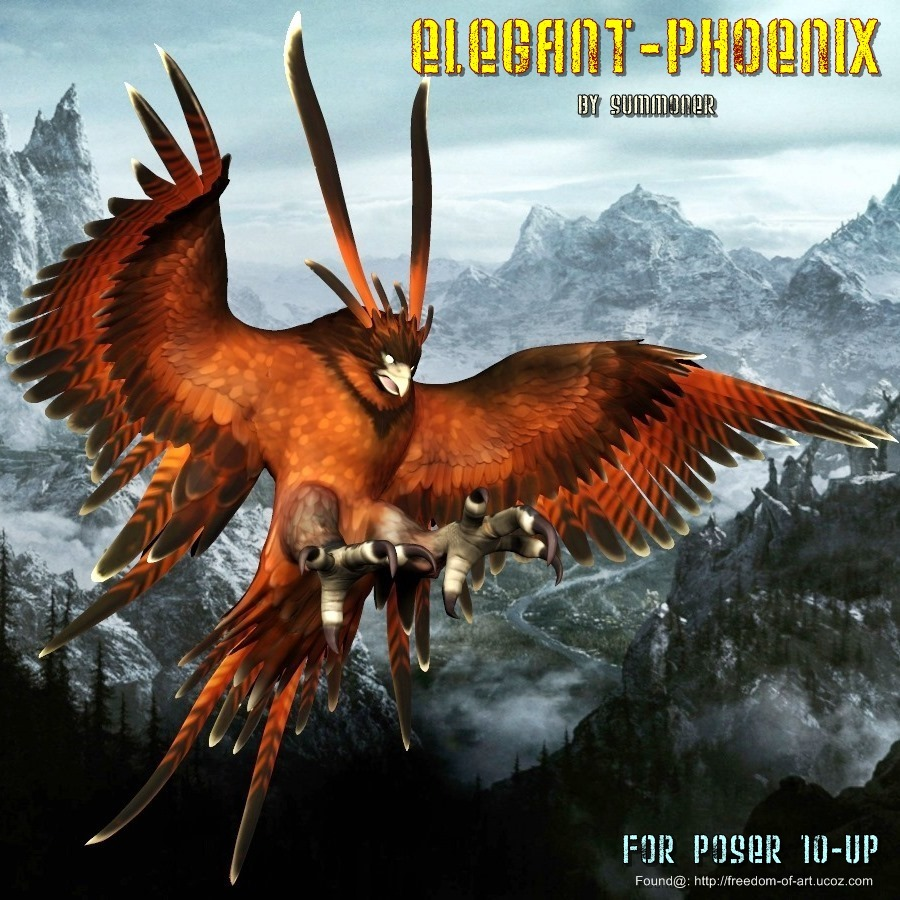 Elegant Phoenix